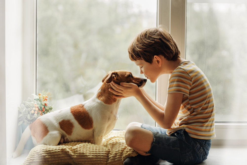 Little,Boy,Kisses,The,Dog,In,Nose,On,The,Window.